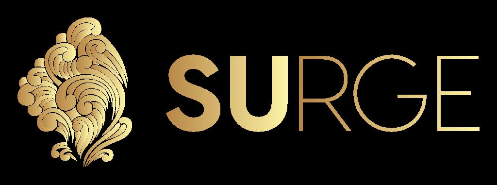 Surge Digital Agency - Academy